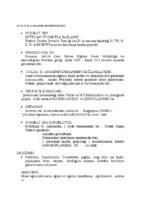 ANASINIFI PROJESİ HİKAYESİ.pdf
