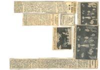 1956_kongre.pdf